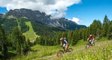 Settimana Mountainbike speciale Erica 5 giorni