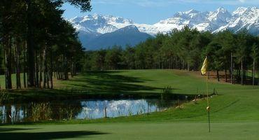 Die Waldhof-Golfsafari