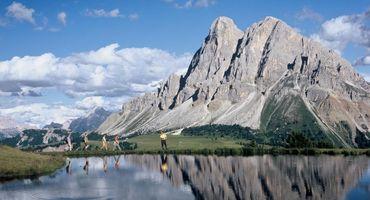 Alpine Wellness-Wandertage
