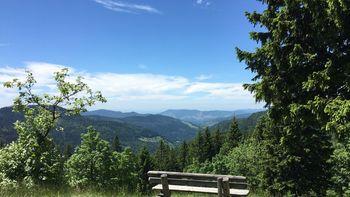 Landschaft mit Bank im Schwarzwald