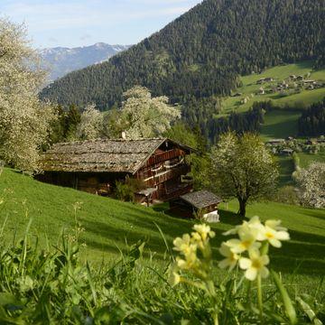 Einst im Alpbachtal | Saison A