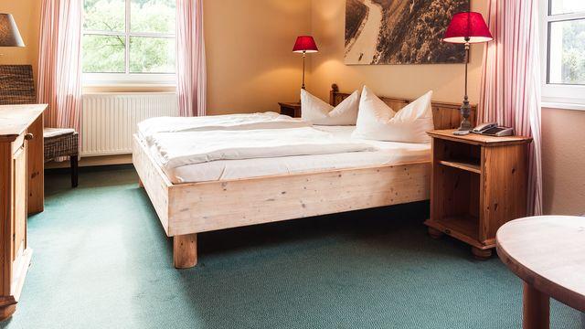 Helvetia double room