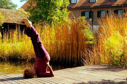 Yoga & Ayurveda zur hormonellen Balance für Frauen