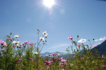 Frühlingswochen mit Fotoworkshop