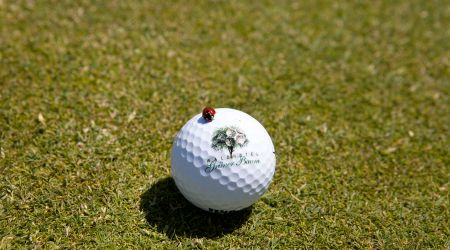 Instants pour les débutants de Golf