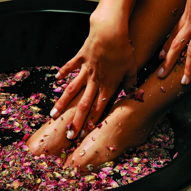 SPA Around the World Package  | 04.12.-22.12.15 & 03.01.-06.02.16 & 06.03.-27.03.16