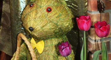 Ostern - das Gelbe vom Ei