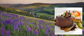 BLACK FOREST HIGHLAND PLEASURE - active vacation and conscious enjoyment