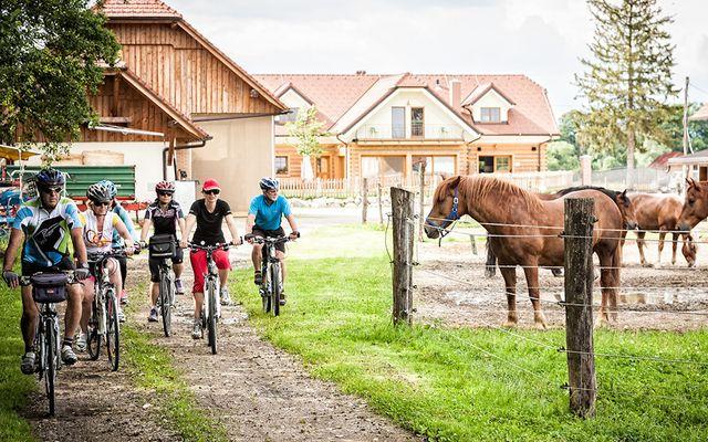 Bio-Bauernhof Trnulja: Urlaub am Bauernhof