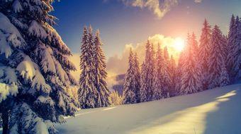 Sackmanns Wintertage | 5 ÜN