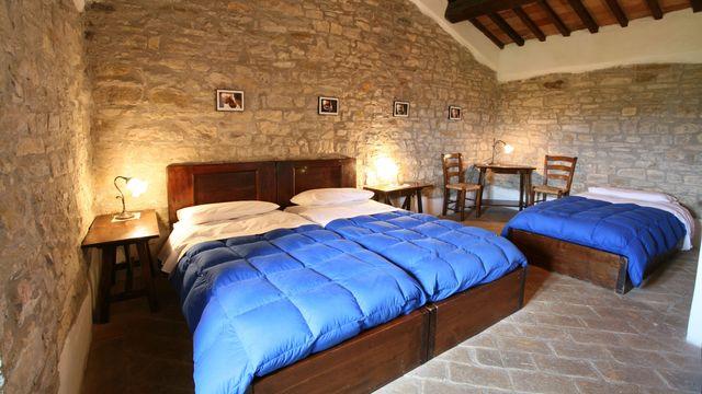 "Multi-Bed Room ""Wild Service Tree"""